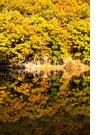 아름다운가을 풍경48