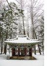 눈 내린 날의 풍경 54