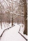 눈 내린 날의 풍경 119