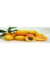 신선한 과일 살구 사진 이미지