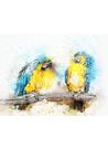 앵무새수채화 - 동물식물