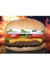 햄버거 사진 이미지(3)