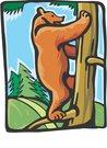 곰,곰돌이,나무타는곰,나무,숲,자연