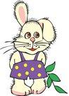 토끼,rabbit,동물