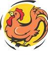 짐승,닭,닭벼슬,수탉,꼬끼오,가축,십이지간동물
