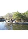호수가있는 공원